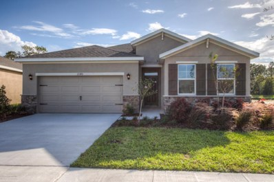 13677 Hunting Creek Place, Spring Hill, FL 34609 - #: 2194310