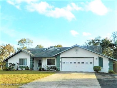 10094 May Gold Lane, Spring Hill, FL 34608 - #: 2196633