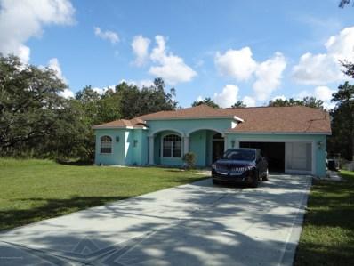 12114 Murre Avenue, Weeki Wachee, FL 34614 - #: 2197407