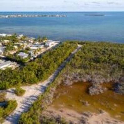 Pirates Road, Cudjoe, FL 33042 - #: 585603