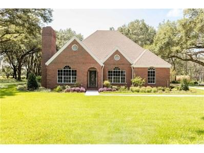 3075 Heritage Acres Lane, Plant City, FL 33566 - #: A4195828