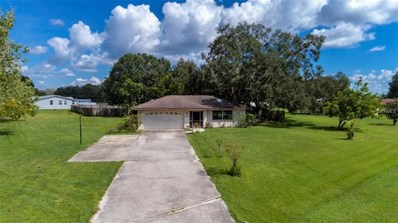 9705 Old Tampa Road, Parrish, FL 34219 - #: A4413704