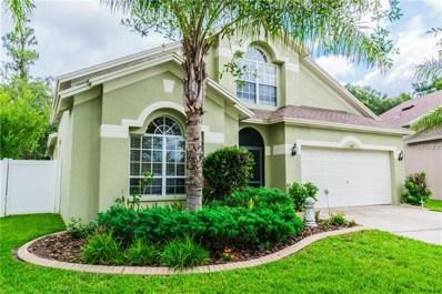 6817 Bluff Meadow Court, Wesley Chapel, FL 33545 - #: E2400096