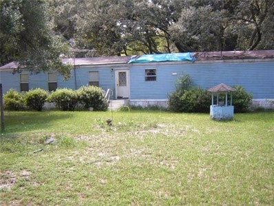 34934 Punch Road, Dade City, FL 33523 - #: E2400574