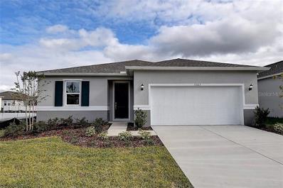 11523 Palmetto Sands Court, Tampa, FL 33626 - #: E2400825