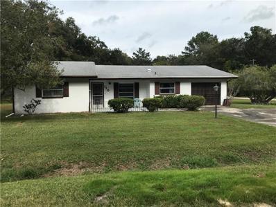 110 Brockway Lane, Brooksville, FL 34601 - #: E2400982