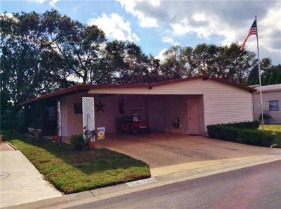 34320 Lodge Drive, Wesley Chapel, FL 33543 - #: E2401113