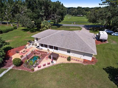 14290 S Highway 475, Summerfield, FL 34491 - #: G5005194