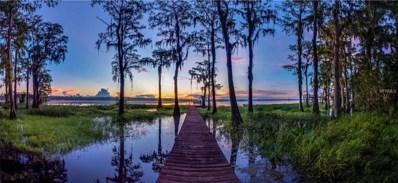 10412 Shadow Oak Trail, Clermont, FL 34711 - #: G5006534