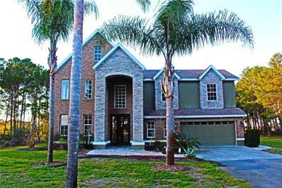 10724 High Crest Court, Howey In The Hills, FL 34737 - #: G5007139