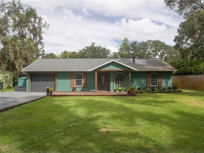 12041 Browns Canal Dr, Clermont, FL 34711 - #: G5007325