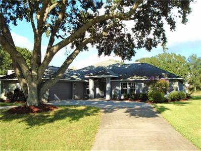 28724 Tammi Drive, Tavares, FL 32778 - #: G5007482