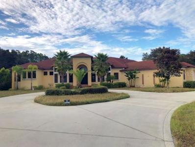 20757 Canoe Crossing Court, Clermont, FL 34715 - #: G5008022