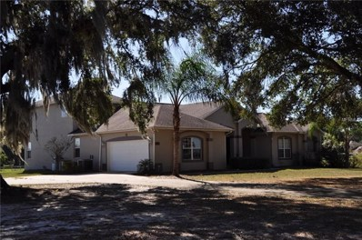 21620 State Road 19, Howey In The Hills, FL 34737 - #: G5008241