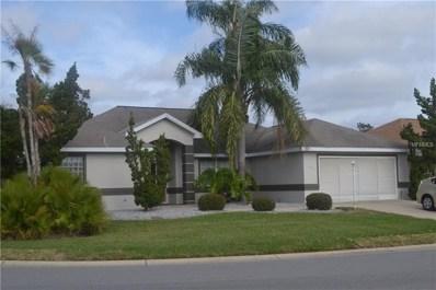 11676 SE 174 Loop, Summerfield, FL 34491 - #: G5010245