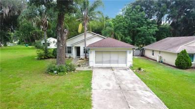 207 Arlington Avenue, Lady Lake, FL 32159 - #: G5017470