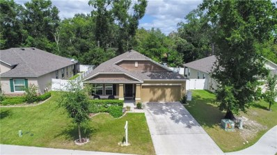 1405 Independence Lane, Mount Dora, FL 32757 - #: G5020848