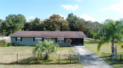 SE 10111 134TH Lane, Belleview, FL 34420 - #: G5023845