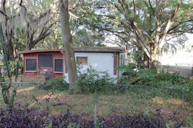 37402 HAPPY Lane, Lady Lake, FL 32159 - #: G5028213