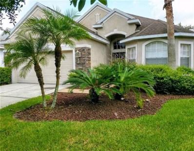 11236 Blacksmith Drive, Tampa, FL 33626 - #: H2400725