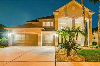 3647 Valencia Cove Court, Land O Lakes, FL 34639 - #: H2400911