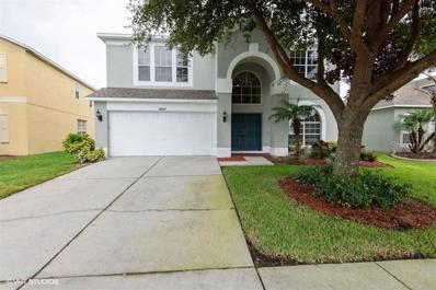 30547 Palmerston Place, Wesley Chapel, FL 33545 - #: H2400965