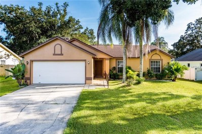 3807 Sugar Creek Court, Plant City, FL 33563 - #: L4903377