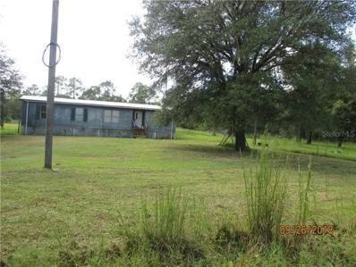 12320 Countryland Drive, Lakeland, FL 33809 - #: L4903525