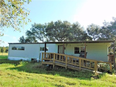 1405 Walker Road, Lakeland, FL 33810 - #: L4903648