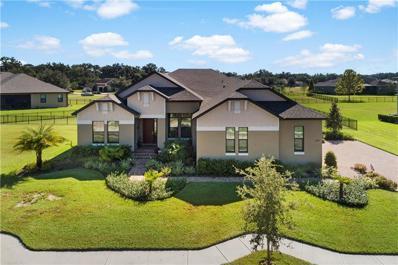 3875 Grandefield Circle, Mulberry, FL 33860 - #: L4904093