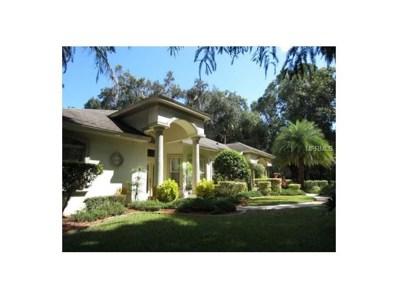 4078 N Chinook Lane, Ormond Beach, FL 32174 - #: O5539686