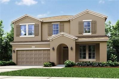 16447 Centipede Street, Clermont, FL 34714 - #: O5733544