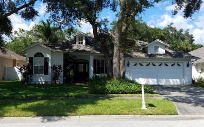 2822 Branch Creek Avenue, Clearwater, FL 33760 - #: O5734083