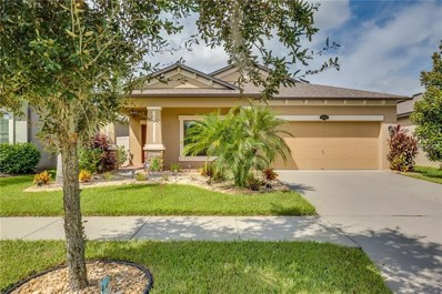 11410 Blue Crane Street, Riverview, FL 33569 - #: O5736185