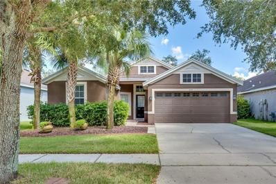 6106 Gannetside Place, Lithia, FL 33547 - #: O5736353