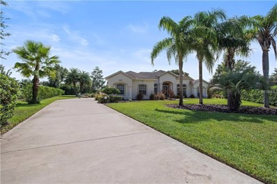 1440 Ioni Court, Ormond Beach, FL 32174 - #: O5736805