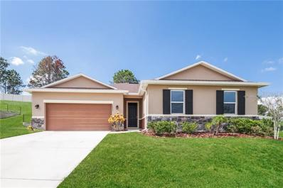 10033 Weathers Loop, Clermont, FL 34711 - #: O5738124