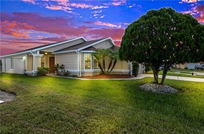 1027 Apopka Woods Lane, Orlando, FL 32824 - #: O5738141