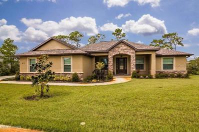 922 Christi Court, Titusville, FL 32796 - #: O5738184