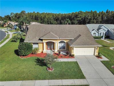 7951 Roundelay Drive, New Port Richey, FL 34654 - #: O5738593