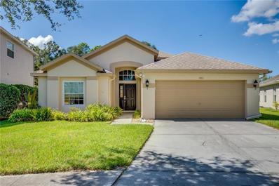 6801 Bluff Meadow Court, Wesley Chapel, FL 33545 - #: O5740743