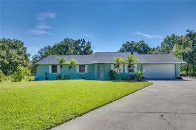 22500 Shoreside Drive, Land O Lakes, FL 34639 - #: O5744652