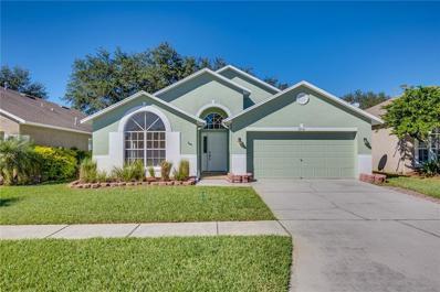 12541 Blazing Star Drive, Tampa, FL 33626 - #: O5747167