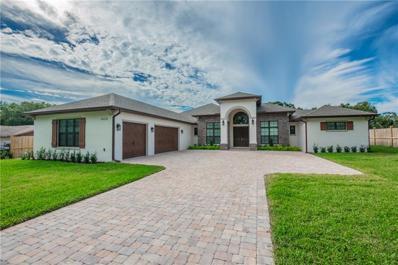 1420 Dingens Avenue, Windermere, FL 34786 - #: O5750292