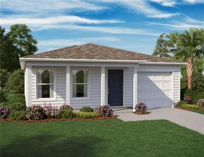 7234 Centerwood Avenue, Spring Hill, FL 34606 - #: O5780387