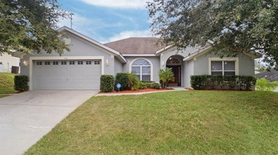 487 Shady Creek Lane, Clermont, FL 34711 - #: O5781498
