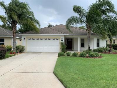 26719 White Plains Way, Leesburg, FL 34748 - #: O5797108