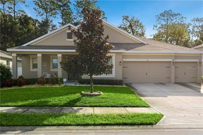 210 Wellington Woods Avenue, Deland, FL 32724 - #: O5819914