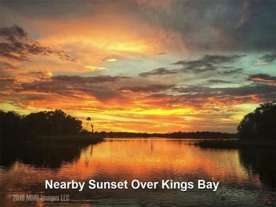 10521 N DAWNFLOWER Point, Crystal River, FL 34428 - #: O5889756