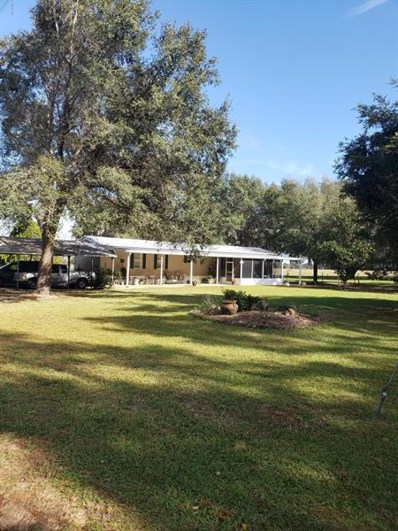 SE 17771 156th Place Road, Weirsdale, FL 32195 - #: OM567292